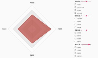 中大型组织 DevOps 成熟度模型设计