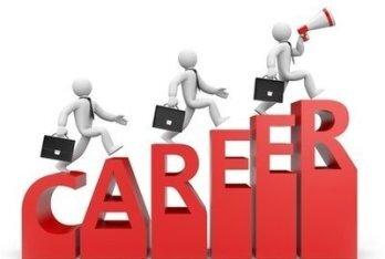 面向软件 IT 专业的高校大学生职业规划问卷调查