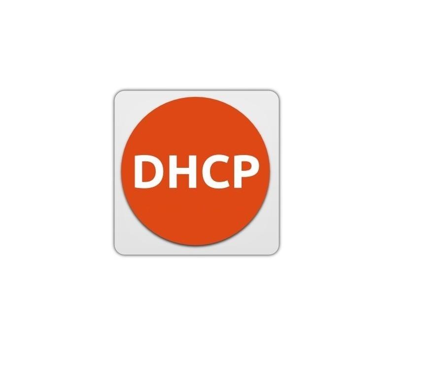 秒懂DHCP是什么