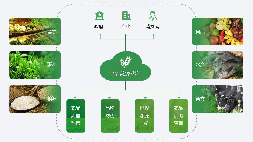 区块链追溯系统开发,区块链底层公共服务平台建设方案