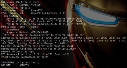 渗透工具开发——XSS平台的命令行实现