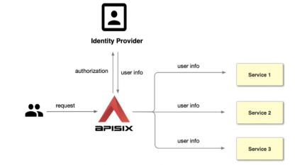 使用 Apache APISIX 进行集中式身份认证及进阶玩法