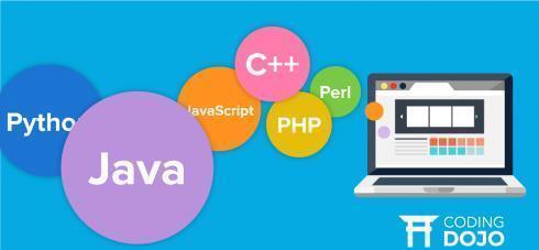 现在Php、Java、Python横行霸道的市场,C++程序员们都在干什么呢?