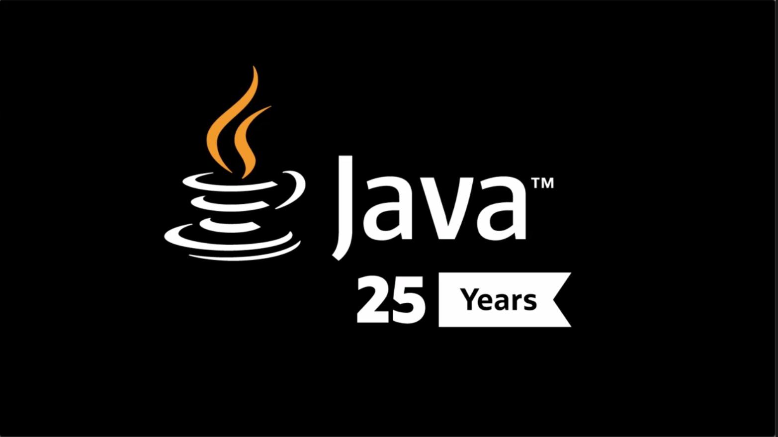 Java 25周年:MovedByJava之观点