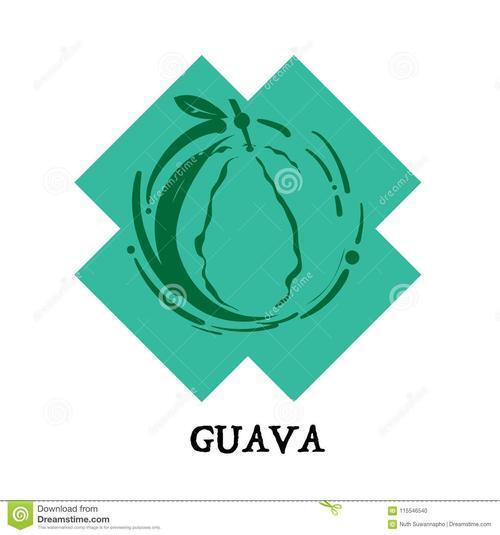 Guava-技术专题-Cache用法介绍