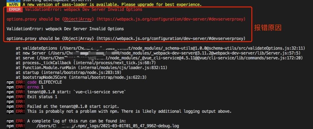 前端开发:Vue启动项目报错ValidationError:webpack Dev Server Invalid Options