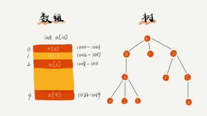 架构师 0 期   数据结构与算法