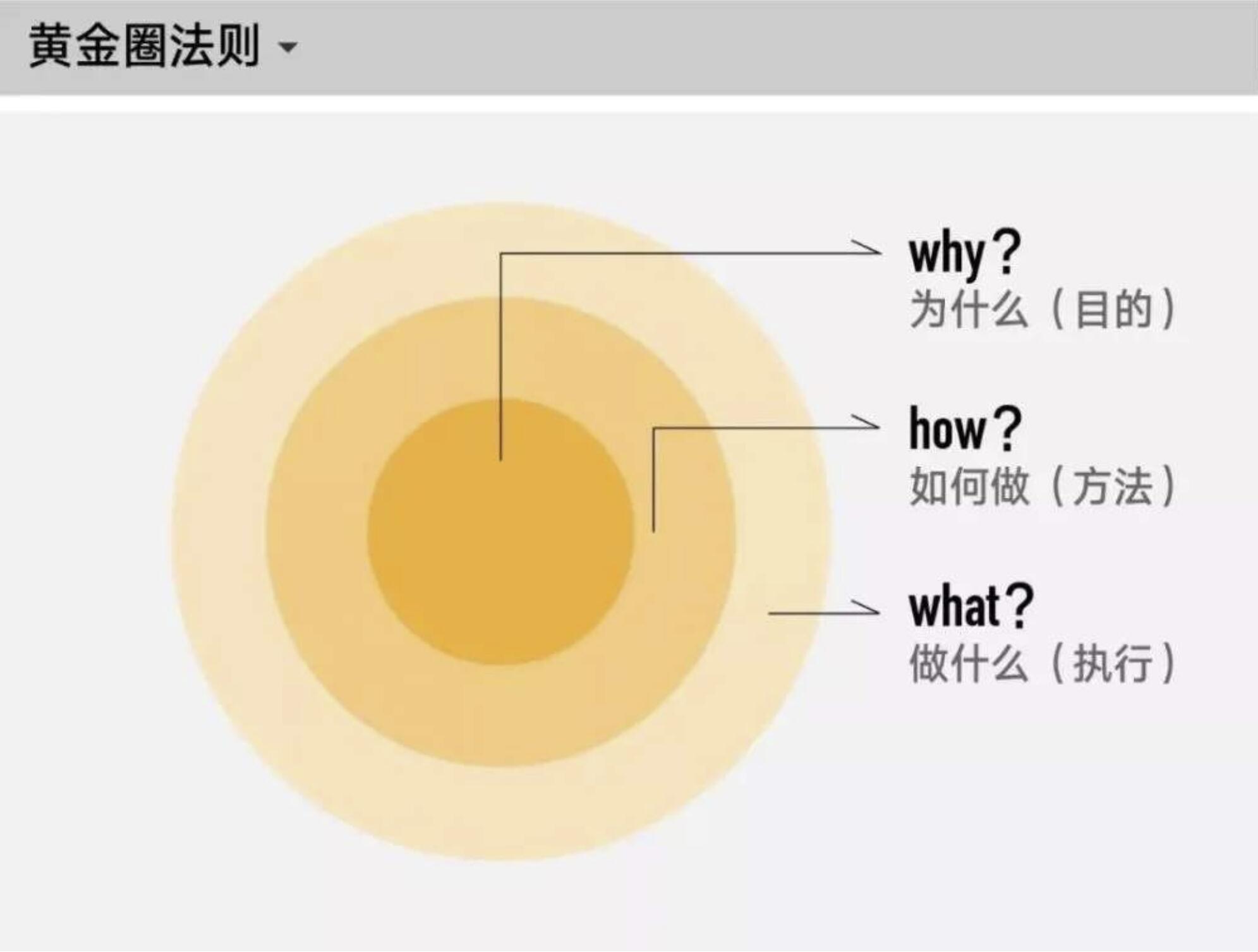 黄金圈法则:成功者必备的深度思考方法