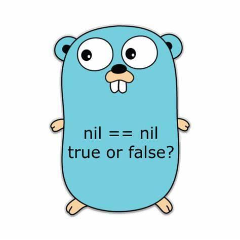 Go 中 Nil 理论上有类型,实践中无类型