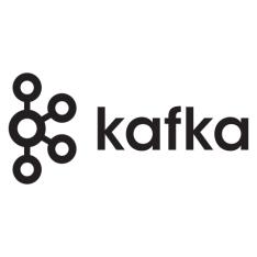 Kafka 是如何建模数据的?