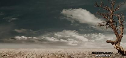 云原生架构:容器资源限制及资源可见性