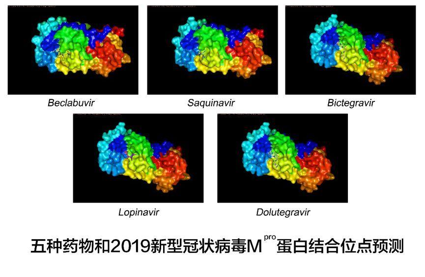AI辅助药物筛选成果发布:五种药物可能对新型冠状病毒有效