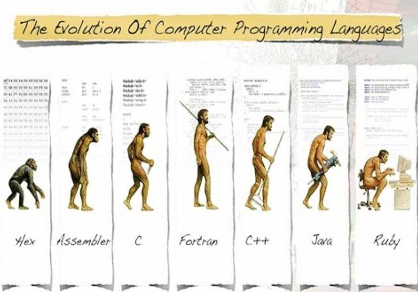如何学会所有的编程语言?